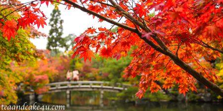 京都の庭 永観堂 禅林寺