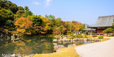 京都の庭 天龍寺